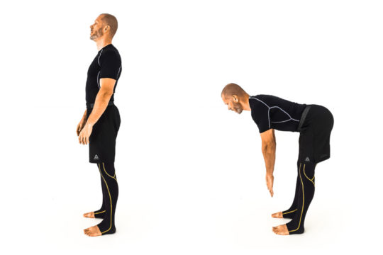 Stiff-legged hip hinge cover